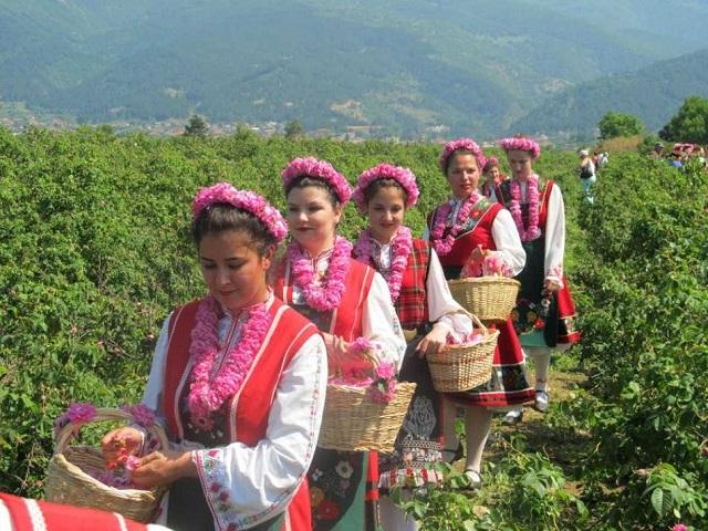Долината на розата (от Бургас)